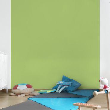 Carta da parati - Colour Spring Green - Tinta unita