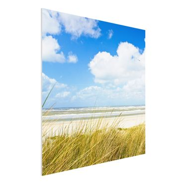Quadro in forex - On the North Sea coast - Quadrato 1:1