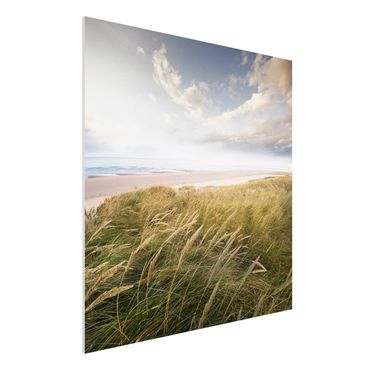 Quadro in forex - Dunes Dream - Quadrato 1:1
