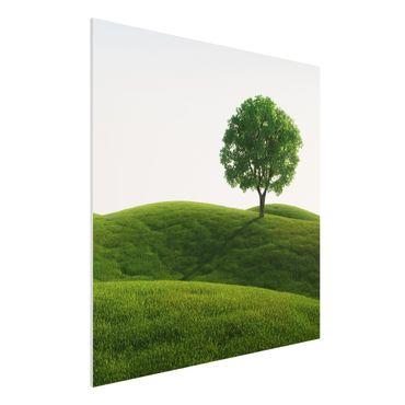 Quadro in forex - Green peace - Quadrato 1:1
