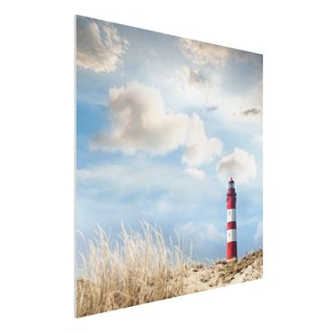 Quadro in forex - Lighthouse in the dunes - Quadrato 1:1