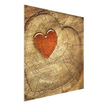 Quadro in forex - Natural Love - Quadrato 1:1