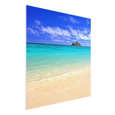 Quadro in forex - Paradise Beach - Quadrato 1:1