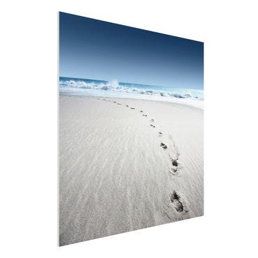 Quadro in forex - Footprints in the sand - Quadrato 1:1