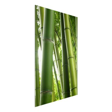 Quadro in forex - Bamboo Trees No.1 - Verticale 2:3
