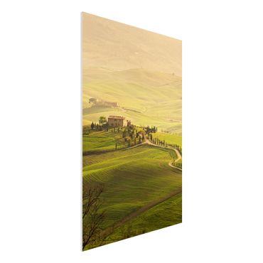 Quadro in forex - Chianti Tuscany - Verticale 2:3