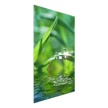 Quadro in forex - Green Ambiance II - Verticale 2:3