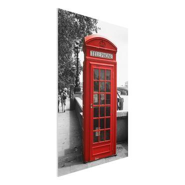 Quadro in forex - Telephone - Verticale 2:3
