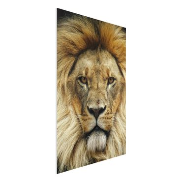 Quadro in forex - Wisdom of Lion - Verticale 2:3