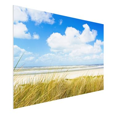 Quadro in forex - On the North Sea coast - Orizzontale 3:2