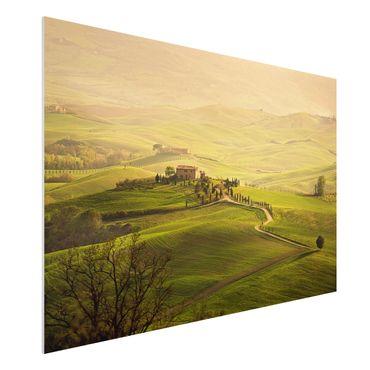 Quadro in forex - Chianti Tuscany - Orizzontale 3:2