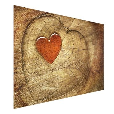 Quadro in forex - Natural Love - Orizzontale 3:2