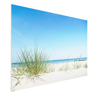 Quadro in forex - Baltic coast - Orizzontale 3:2