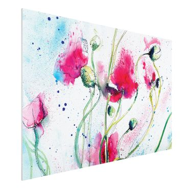 Quadro in forex - Painted Poppies - Orizzontale 3:2
