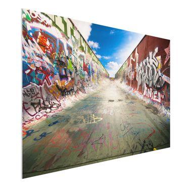 Quadro in forex - Skate Graffiti - Orizzontale 3:2