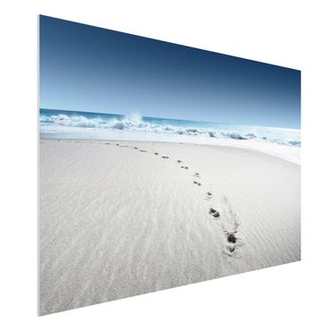 Quadro in forex - Footprints in the sand - Orizzontale 3:2