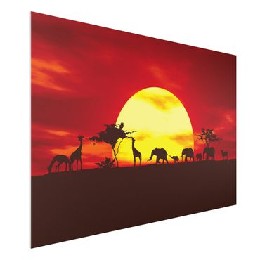 Quadro in forex - Sunset Caravan - Orizzontale 3:2