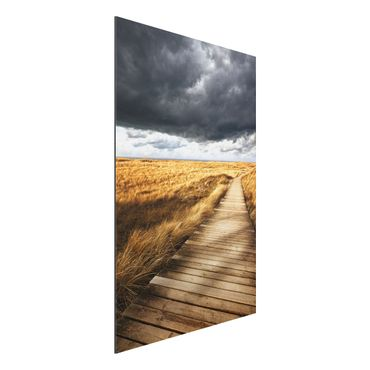 Quadro in alluminio - Pathway Through The Dunes
