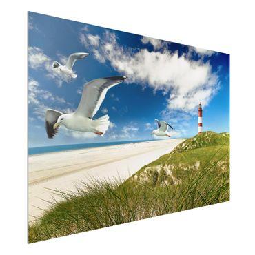 Quadro in alluminio - Dune Breeze