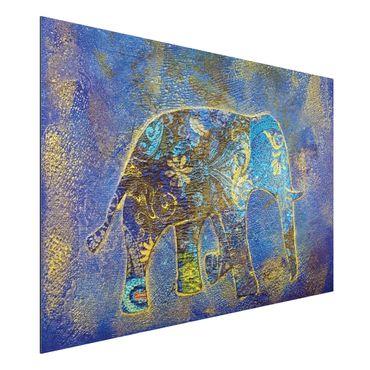 Quadro in alluminio - Elephant in Marrakech