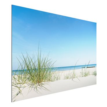 Quadro in alluminio - Baltic coast