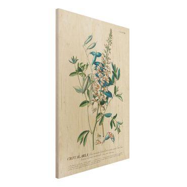 Stampa su legno - Vintage botanico Legumi Illustrazione - Verticale 3:2