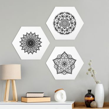 Esagono in Alu-dibond - Mandala Fiore Sun Set di illustrazione Bianco e nero