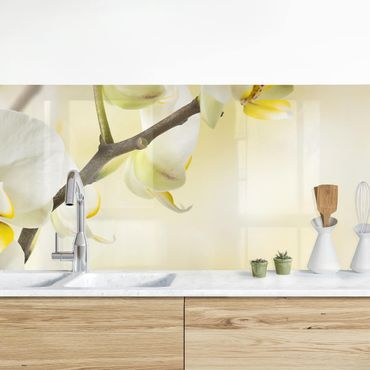 Rivestimento cucina - Ramo Di Orchidea