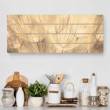 Stampa su legno - Dandelions close-up in tonalità seppia casalinga - Orizzontale 2:5