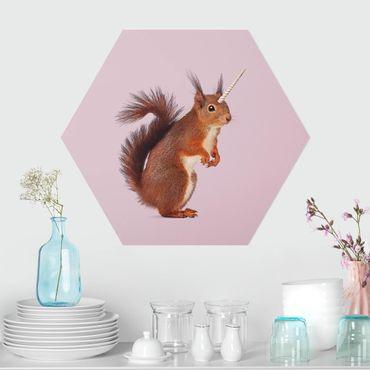 Esagono in forex - Unicorn Squirrel