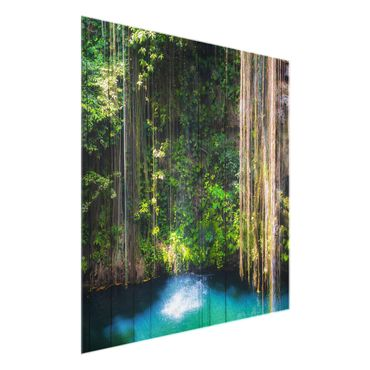 Quadro in vetro - Hanging roots of Ik-Kil Cenote - Quadrato 1:1