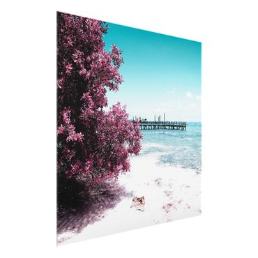 Quadro in vetro - Paradise beach Isla Mujeres - Quadrato 1:1