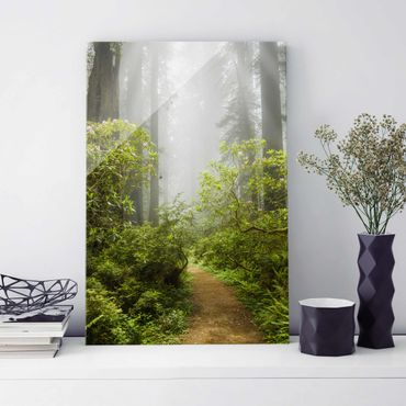 Quadro in vetro - Misty forest path - Verticale 2:3