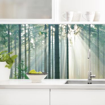 Rivestimento cucina - Foresta illuminata