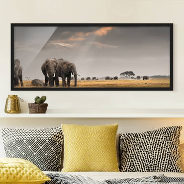 Poster con cornice - Savana Elefante - Panorama formato orizzontale
