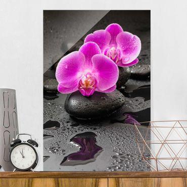 Quadro in vetro - Pink Orchid Fiori Sulle Pietre Con Le Gocce - Verticale 3:2