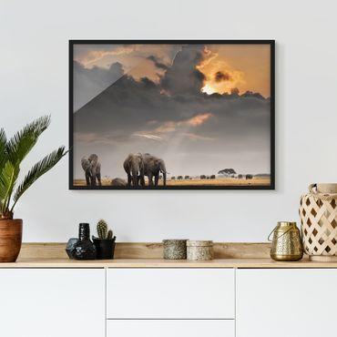 Poster con cornice - Elephant Savanna - Orizzontale 3:4