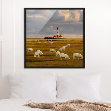 Poster con cornice - North Sea Lighthouse With Sheep Flock - Quadrato 1:1