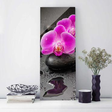 Quadro in vetro - Pink Orchid Fiori Sulle Pietre Con Le Gocce - Verticale