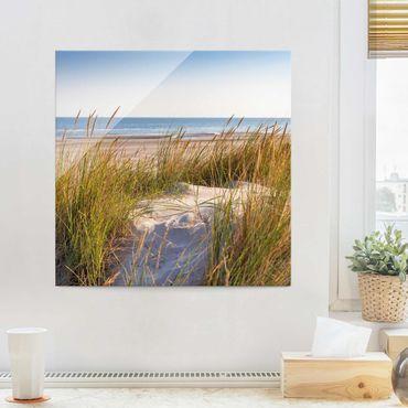 Quadro in vetro - Beach Dune Al Mare - Quadrato 1:1