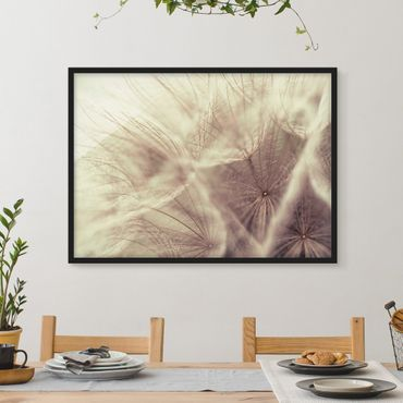 Poster con cornice - Detailed And Dandelion Macro Shot With Vintage Blur Effect - Orizzontale 3:4