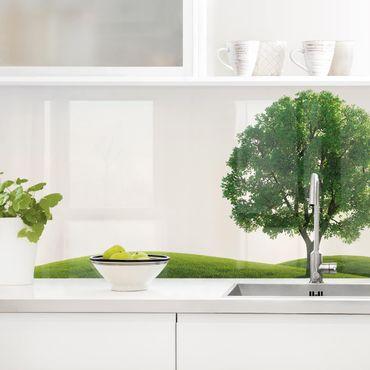 Rivestimento cucina - Pace Verde