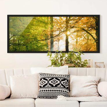 Poster con cornice - Morning Light - Panorama formato orizzontale