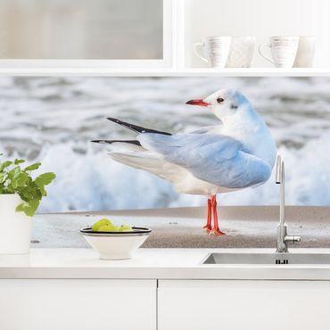 Rivestimento cucina - Gabbiano Sulla Spiaggia Di Fronte Al Mare