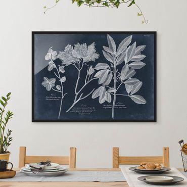 Poster con cornice - Foliage Dark Blue - Juniper - Orizzontale 3:4