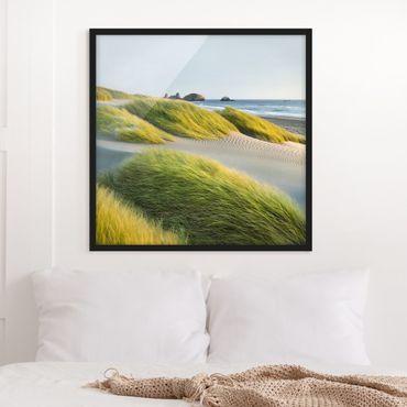 Poster con cornice - Dunes And Grasses At The Sea - Quadrato 1:1