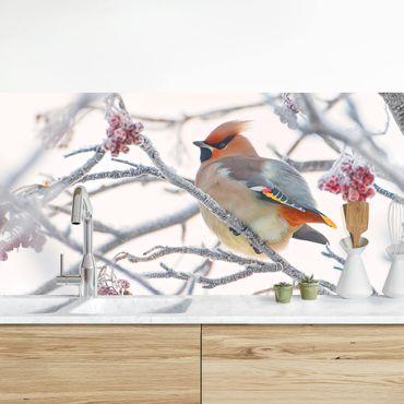 Rivestimento cucina - Waxwing In Tree