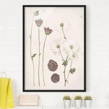 Poster con cornice - Herbarium In Rosa IV - Verticale 4:3