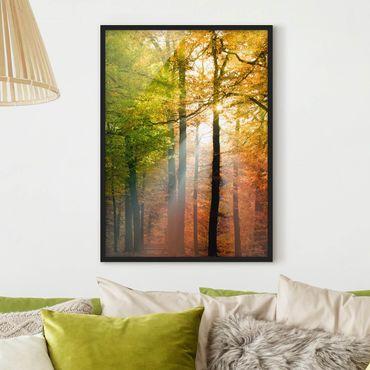 Poster con cornice - Morning Light - Verticale 4:3