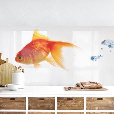 Rivestimento cucina - Pesce Rosso